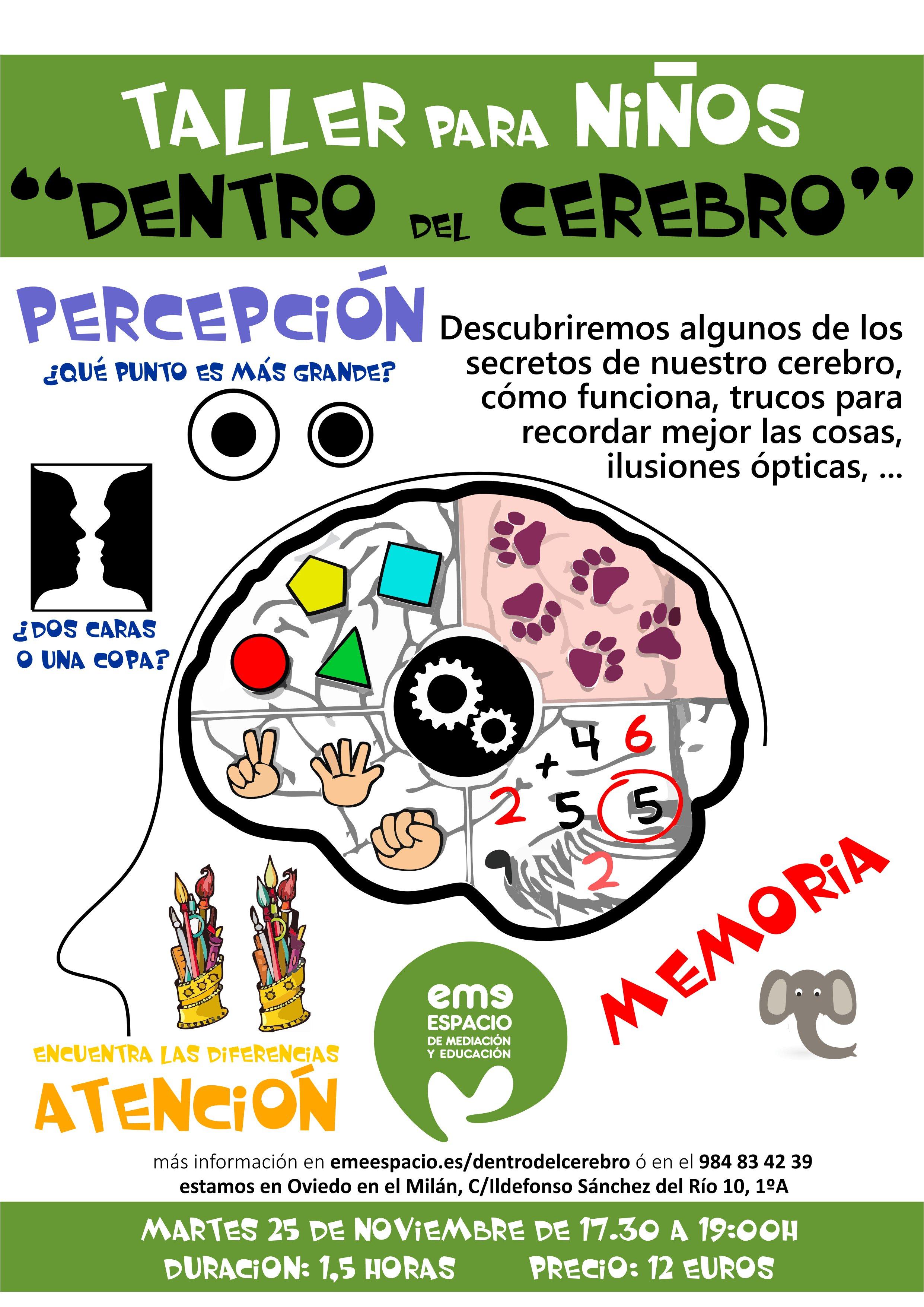 dentro del cerebro 25-9