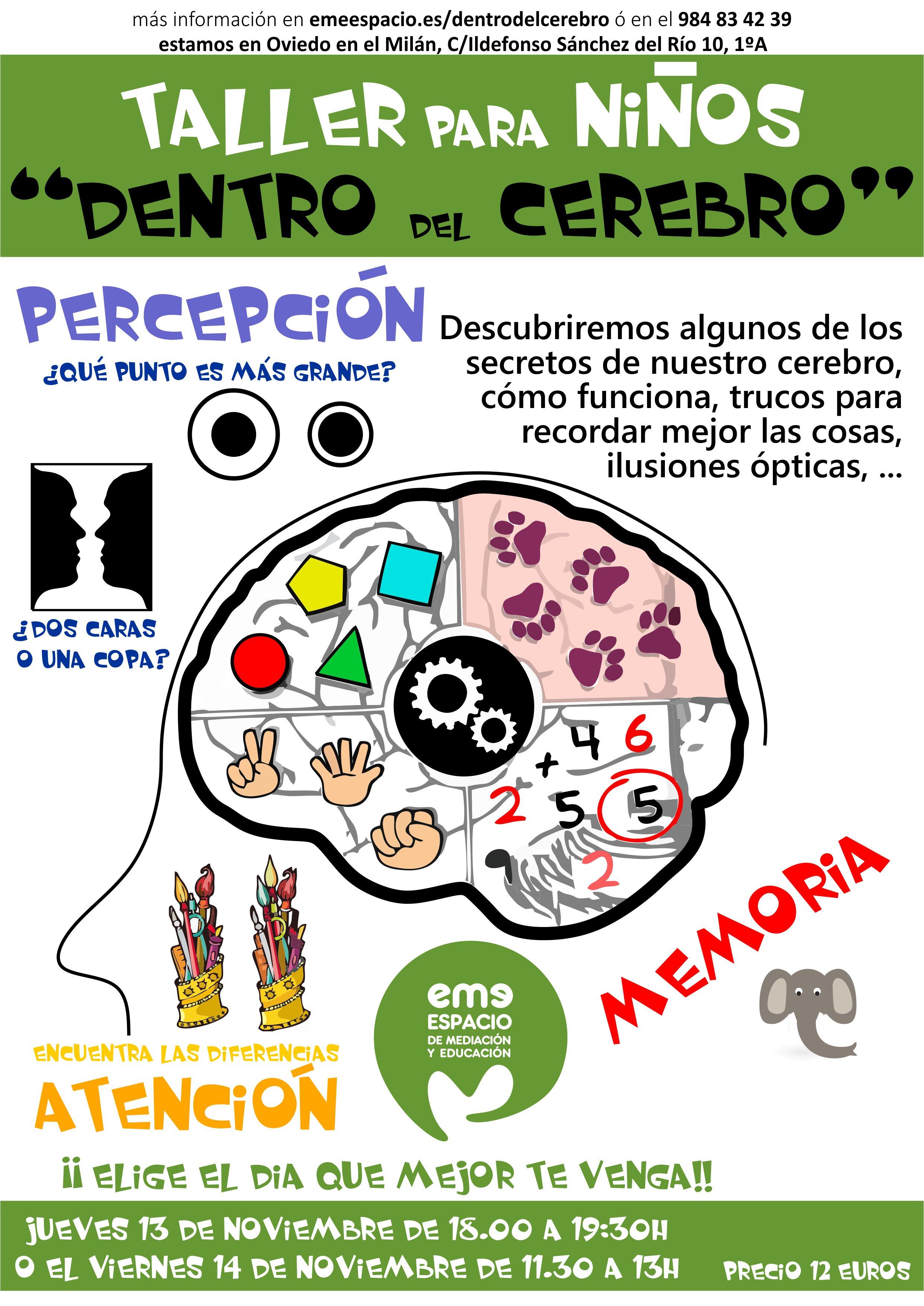 dentro del cerebro 2DIAS